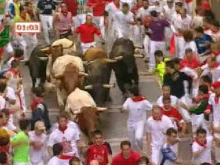 Running the bulls in Spain