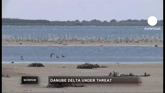 Activists: Danube Delta in Danger!